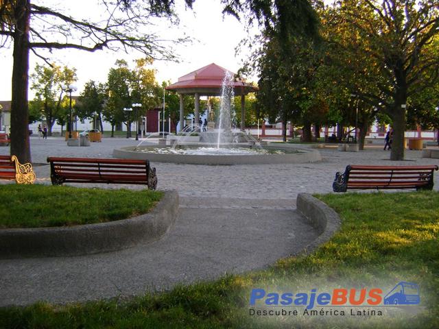 Pasaje Bus te invita a conocer San Javier, ciudad que se destaca por su actividad agrícola y vitivinícola.