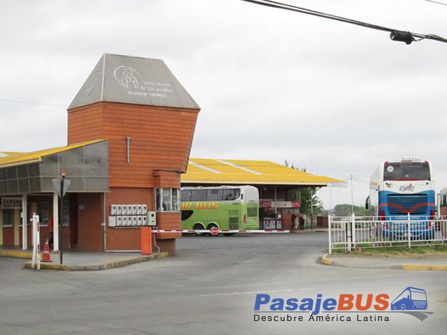 en los terminales de los ángeles encontrarás muchos destinos con recorrido al norte, centro y sur de chile. cotiza y compra tus pasajes de bus en pasajebus.com