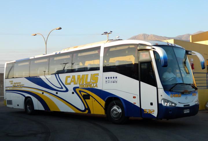 Buses Camus