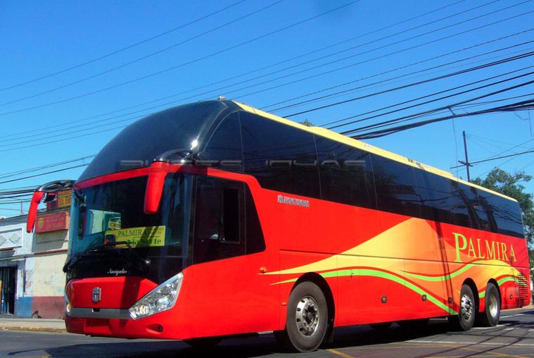 Buses Palmira